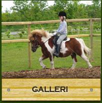 knap_galleri